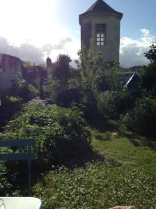 2014-05-11 Loches apt garden 4