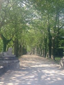 2014-05-13 Loire Valley Chenonceau 5