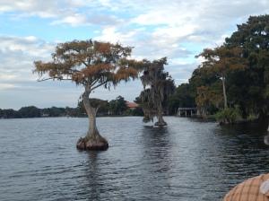 2014-11-09 WP Boat Ride 10