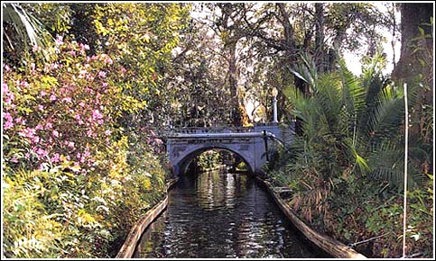 bridge in the canal