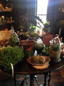 2015-07-04 Liepers Fork Shop Moss Terrarium 1