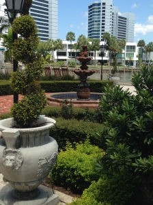 2015-08-23 Sarasota 29th Anniversary Ritz rose garden