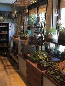 2016-05-02 Portland - The Pearl local shop