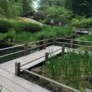 2016-05-03 Portland - Washington Park Japanese Gardens 10