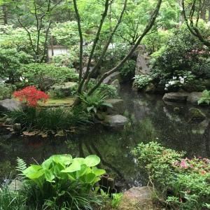 2016-05-03 Portland - Washington Park Japanese Gardens 17