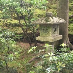 2016-05-03 Portland - Washington Park Japanese Gardens 18