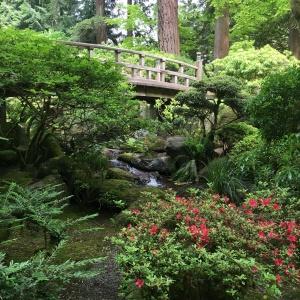 2016-05-03 Portland - Washington Park Japanese Gardens 8