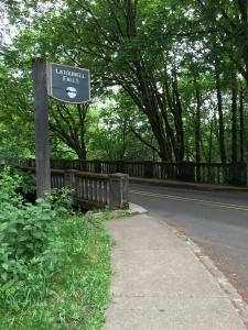 2016-05-04 Portland - Columbia River Latourell Falls 1