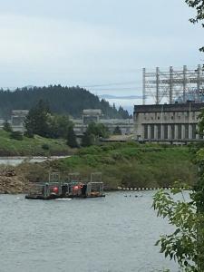 2016-05-04 Portland - Columbia River Salmon Hatchery and Dam 2