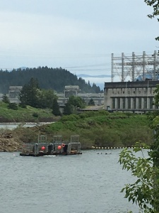 2016-05-04 Portland - Columbia River Salmon Hatchery and Dam 2