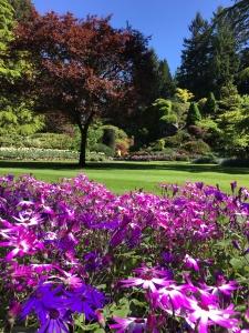 2016-05-06 Victoria BC - Buchart Gardens 24
