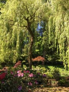 2016-05-06 Victoria BC - Buchart Gardens 36