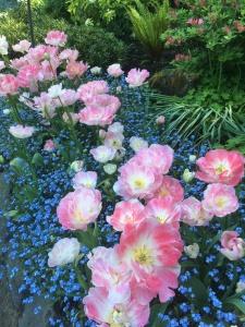 2016-05-06 Victoria BC - Buchart Gardens 42
