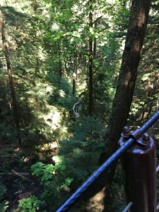 2016-05-07 Vancouver - Capillino Suspension Bridge 4