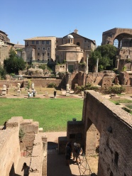 2016-08-20 Rome Colosseum Tour Forum 2