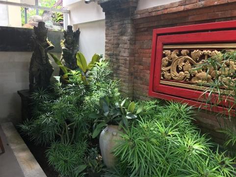 2017-03-20 Bali Ubud Oops 7
