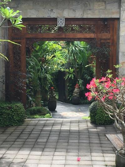 2017-03-22 Bali Ubud jalan to Sooz's villa 4
