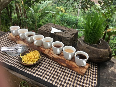 2017-03-23 Bali Ubud Coffee Plantation 19