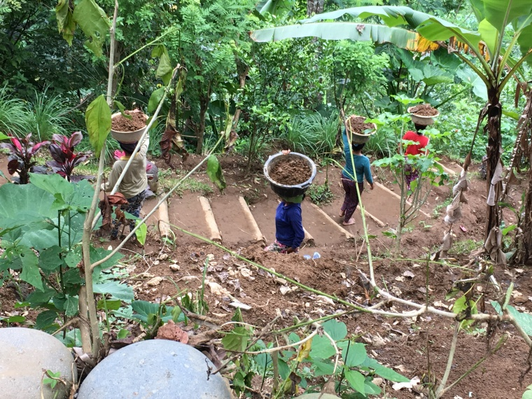 2017-03-23 Bali Ubud Coffee Plantation 20