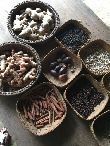 2017-03-23 Bali Ubud Coffee Plantation 7