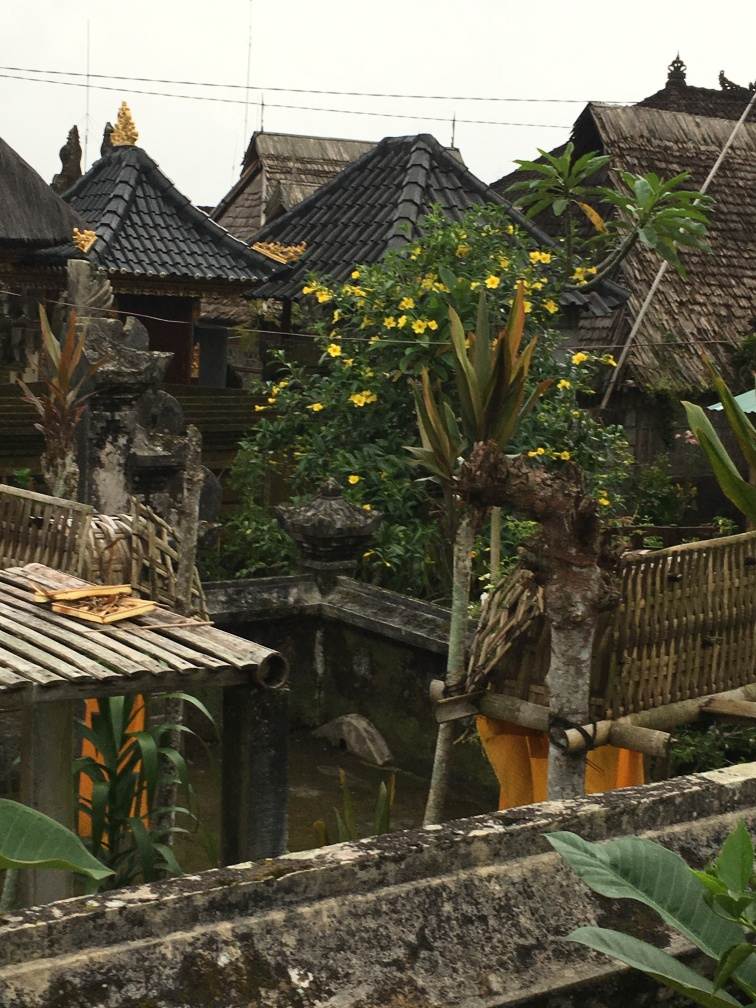 2017-03-26 Bali Traditional Village 14