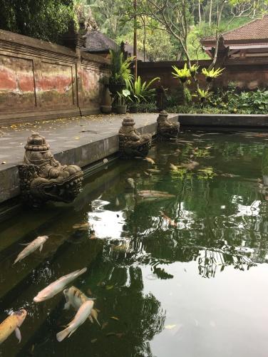 2017-03-26 Bali Ubud Water Temple 31