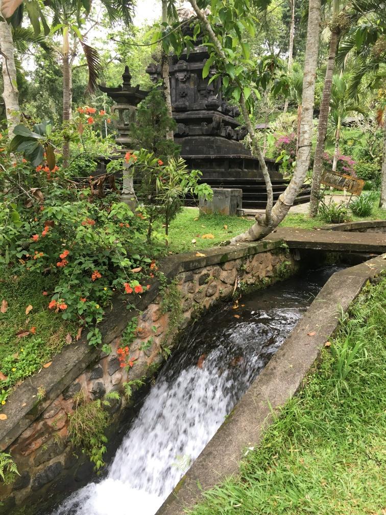 2017-03-26 Bali Ubud Water Temple 38