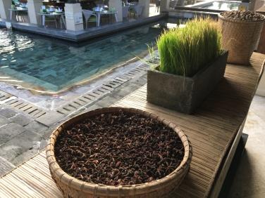 2017-03-29 Bali Intercontinental gardens and pools 27