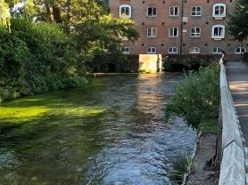 2018-08-05 Winchester walking path along the river 6