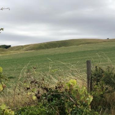 2018-08-11 White Horse Hill 1